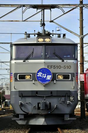 S_dsc5442_1